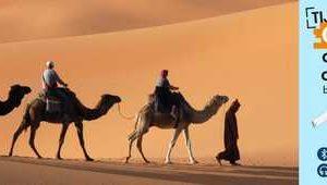 Arabisch (Golf Arabisch) voor beginners